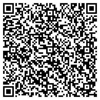 QR-код с контактной информацией организации ООО МИР