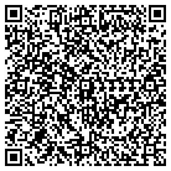 QR-код с контактной информацией организации ПИСАРЕВСКАЯ, ИП