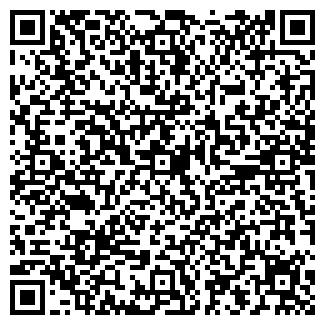 QR-код с контактной информацией организации ТЕЛИЭМ, ОАО