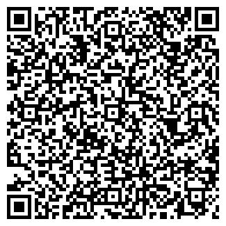 QR-код с контактной информацией организации ШИНСЕРВИС