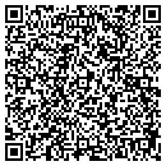 QR-код с контактной информацией организации БИ-ЛАЙН GSM