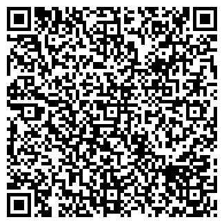 QR-код с контактной информацией организации ЛИНЗА, ООО