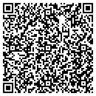 QR-код с контактной информацией организации БАСО ТД, ООО