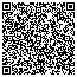 QR-код с контактной информацией организации ВИЛЬДОН, ООО