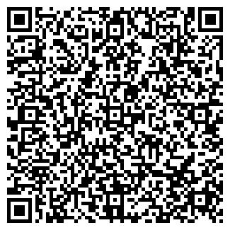 QR-код с контактной информацией организации ИШЕЕВКА ОЭС