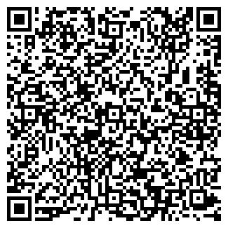 QR-код с контактной информацией организации ВИЛНА, ООО