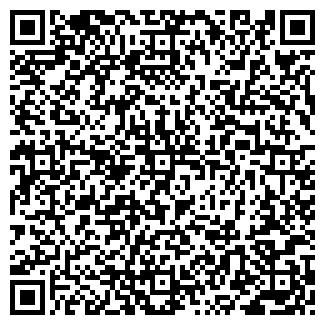 QR-код с контактной информацией организации КАШИН, ЧП