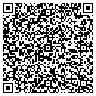 QR-код с контактной информацией организации № 231