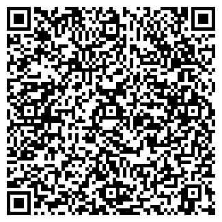 QR-код с контактной информацией организации № 272