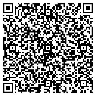 QR-код с контактной информацией организации № 295