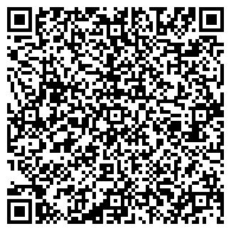 QR-код с контактной информацией организации № 310