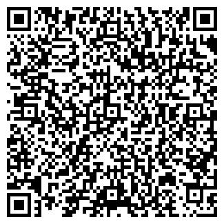 QR-код с контактной информацией организации № 390