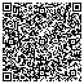 QR-код с контактной информацией организации ЗИДИЯРОВ, ЧП