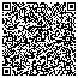 QR-код с контактной информацией организации VIP-ПЕРСОНА