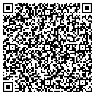 QR-код с контактной информацией организации СПИРЯГИНА, ИП