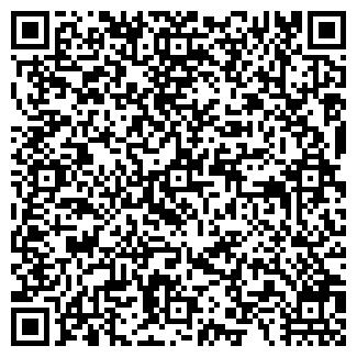 QR-код с контактной информацией организации Рис