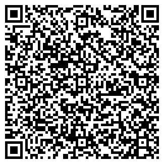 QR-код с контактной информацией организации СКИФ ИНКОМ, ЗАО