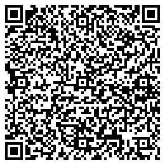 QR-код с контактной информацией организации ЧП МАЛЫШЕВ О. П.