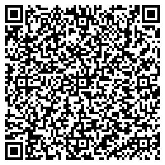 QR-код с контактной информацией организации ИП Мир детства