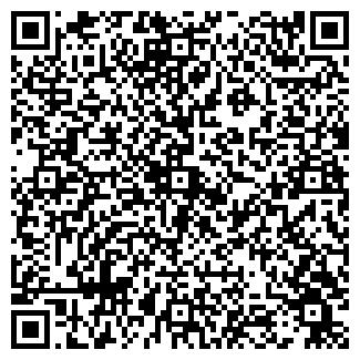 QR-код с контактной информацией организации ИП Колешко Д.Н.