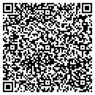 QR-код с контактной информацией организации № 173 ДОУ