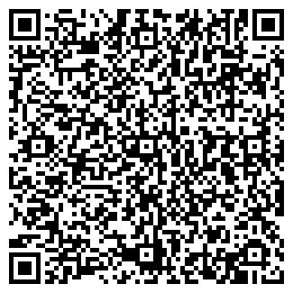 QR-код с контактной информацией организации № 207 ДОУ