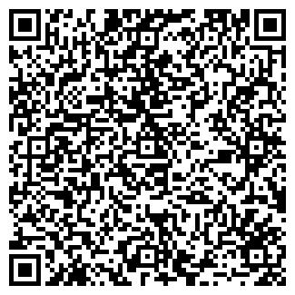 QR-код с контактной информацией организации № 33 ШКОЛА