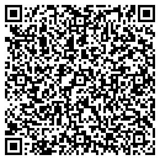 QR-код с контактной информацией организации ДШИ ПОС. КОСТИНО
