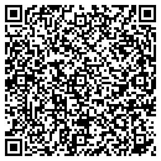QR-код с контактной информацией организации ВАВИЛОН ПК