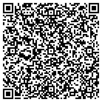 QR-код с контактной информацией организации БАЛТИЙСКИЙ ЛИЗИНГ