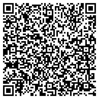 QR-код с контактной информацией организации ДИСКО, ООО