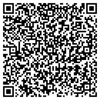 QR-код с контактной информацией организации АЛИСА РИА