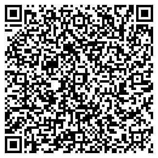 QR-код с контактной информацией организации БИГЛЕР Н. А.
