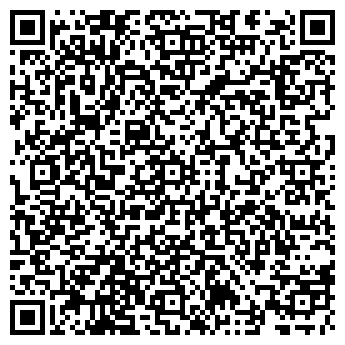 QR-код с контактной информацией организации ДИНА ТОРГОВЫЙ ДОМ