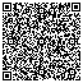 QR-код с контактной информацией организации АЛЕХИНА, ЧП