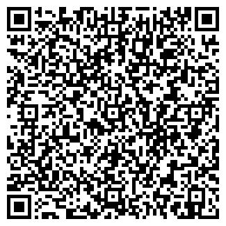 QR-код с контактной информацией организации МАГАЗИН N 36
