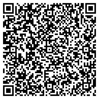 QR-код с контактной информацией организации АЙСБЕРГ, ЧП