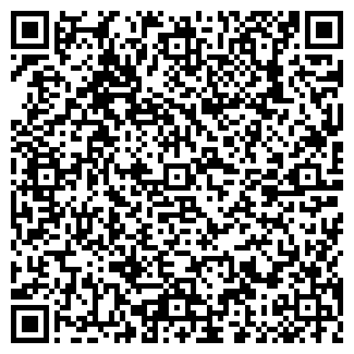 QR-код с контактной информацией организации № 2 РОМАШКА
