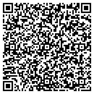 QR-код с контактной информацией организации ИЗОБИЛИЕ