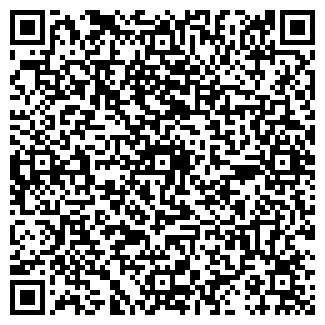 QR-код с контактной информацией организации БИРЮЗА, ЗАО