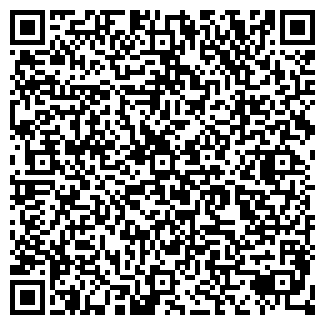 QR-код с контактной информацией организации БИЗНЕС-СИСТЕМЫ