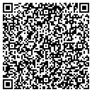 QR-код с контактной информацией организации ИП ГУБИН С.А.
