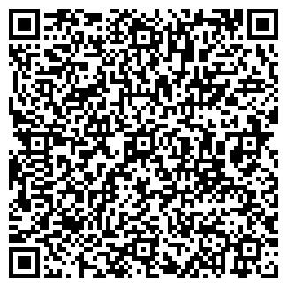 QR-код с контактной информацией организации ОРНИКА, ОАО