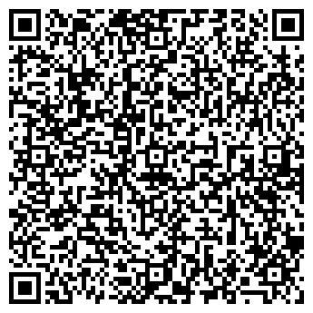 QR-код с контактной информацией организации ДЕТСКИЙ ТЕАТР СИНЯЯ ПТИЦА