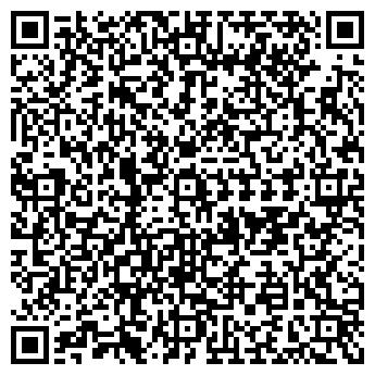 QR-код с контактной информацией организации ХОЛСТОВСКИЙ ДЕТСКИЙ САД