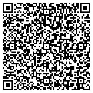 QR-код с контактной информацией организации СЕМЕЧКИН, ЧП