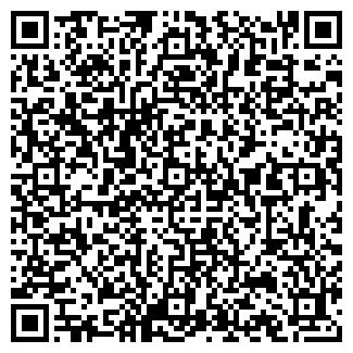 QR-код с контактной информацией организации № 12 ДШИ
