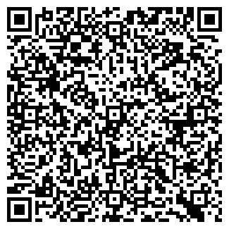 QR-код с контактной информацией организации № 13 ДМШ