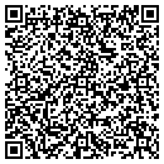 QR-код с контактной информацией организации КОДОРОВ С.В., ЧП