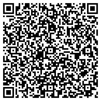 QR-код с контактной информацией организации ИП ТРИШИНА